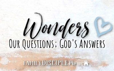 Wonders: Our Questions – God's Answers